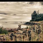 Whiffen Spit Park, Sooke, BC