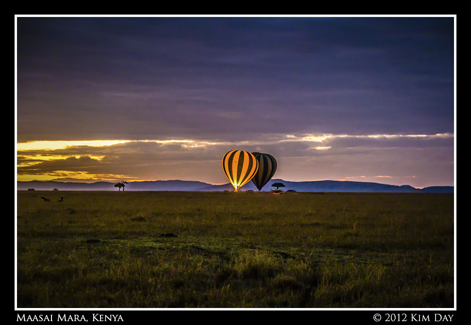 Balloons Ready For Take Off At Dawn